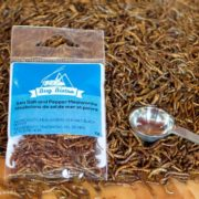 Gormet Edible Insects